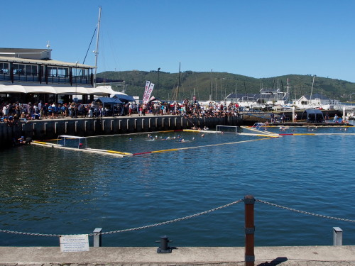 Knysna harbor water polo
